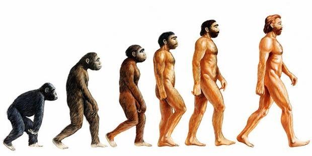 evrim-ile-yaratilisi-aciklayabilirmiyiz-1 Varlıkların yaratılması evrimle açıklanabilir mi?
