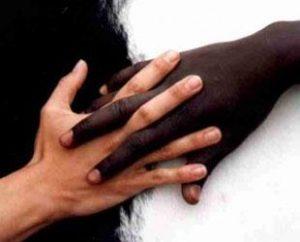 irkcilik-300x242-1 Irkçılığı ilk dâvâ eden kimdir ve bu davranış, kimin özelliğidir?