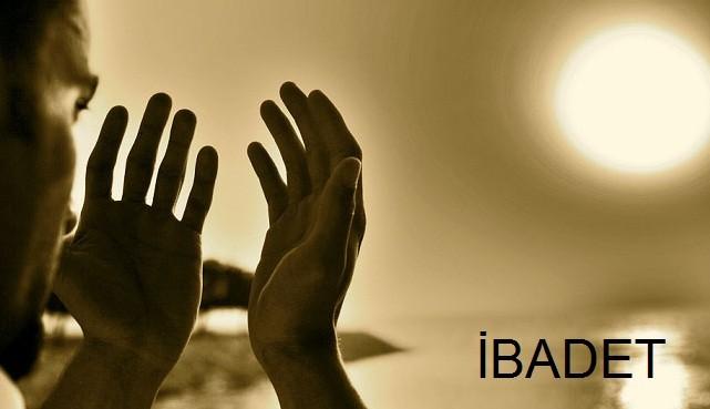 ibadet-1 Allahu Teala, Kulunun İbadetinden Fayda Sağlamaz