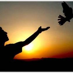 insan-ve-hurriyet-250x250-1 Allah İçin Sevmek Böyle Olur