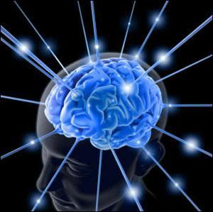Aklın İnsan Hayatındaki Yeri