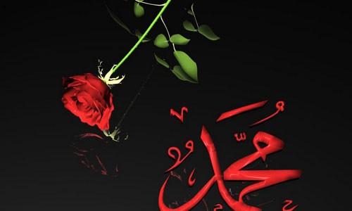 İslam Mesajını Anlamak Resulullah'a İtaat ile Olur