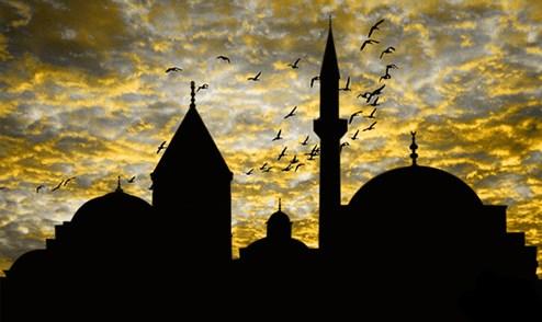 Biz Türkler koyunluğumuzu geri istiyoruz