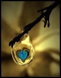 Güzellik ve Aşk