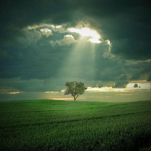 isik-huzmesi_659501 İsa (a.s.)'ın nüzulü ve Mehdi (a.s.)'in gelmesi ile ilgili açık ayet var mıdır?