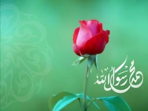 Sünnet,Evrensel Çapta Yapılmış İslamın Yorumudur