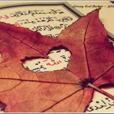 images-1 Sebepleri Yaratan Allah'tır