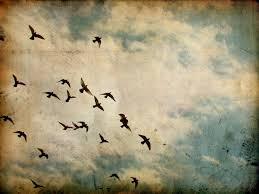 Ahlak, Mutluluk ve Özgürlük