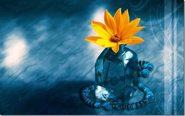 blueflower_thumb Nur-u Muhammedî o alemin çekirdeği, semeresi