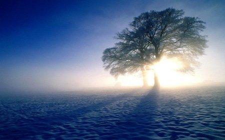 Mutlak Üstünlük Ancak Allah -İnsan Bağlantısında Kendini Gösterir...