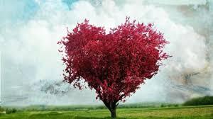 Sevgi Uygarlığı