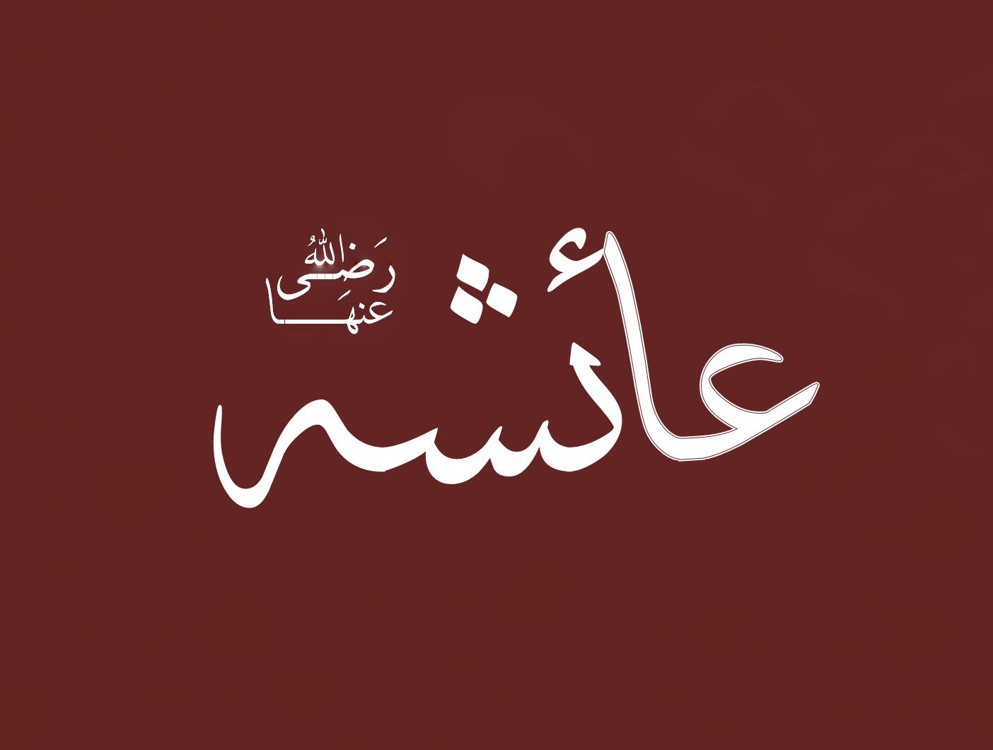 Aisha Hadislerin Tarihe Arzı'nın Uygulamadaki Bazı Problemler