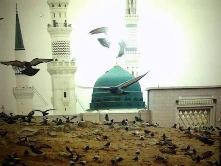 images-6-1 İmâm-ı Rabbânî'nin Sahabe Hakkındaki Görüşleri