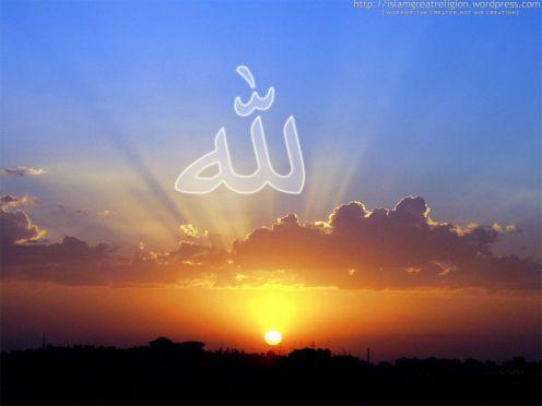 Insan Şu Dünyada Memur ve Misafirdir